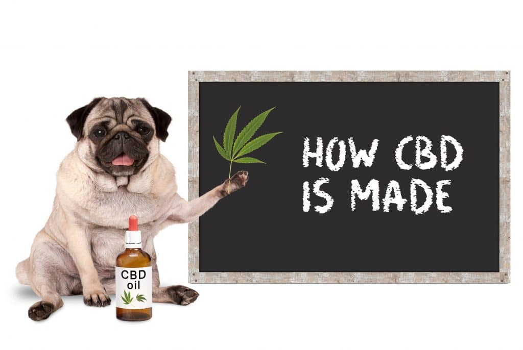 How is CBD Oil Made